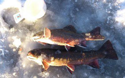 Första isfiske